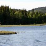 Nordmarka og Vesleflåtan Sommer 2006