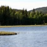 Nordmarka_160606_023_1