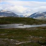 L_gen_og_indre_Troms_juni_2008_068