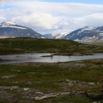 Løgen og Indre Troms Juni 2008