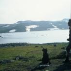 Hardangervidda Eldre Bilder