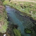 vestkyst creek