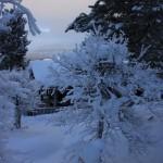 Vinter på Kvamsfjellet